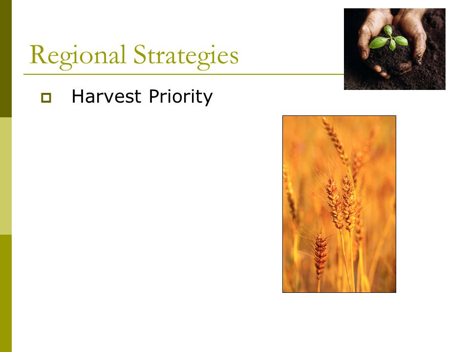 Regional Strategies  Harvest Priority