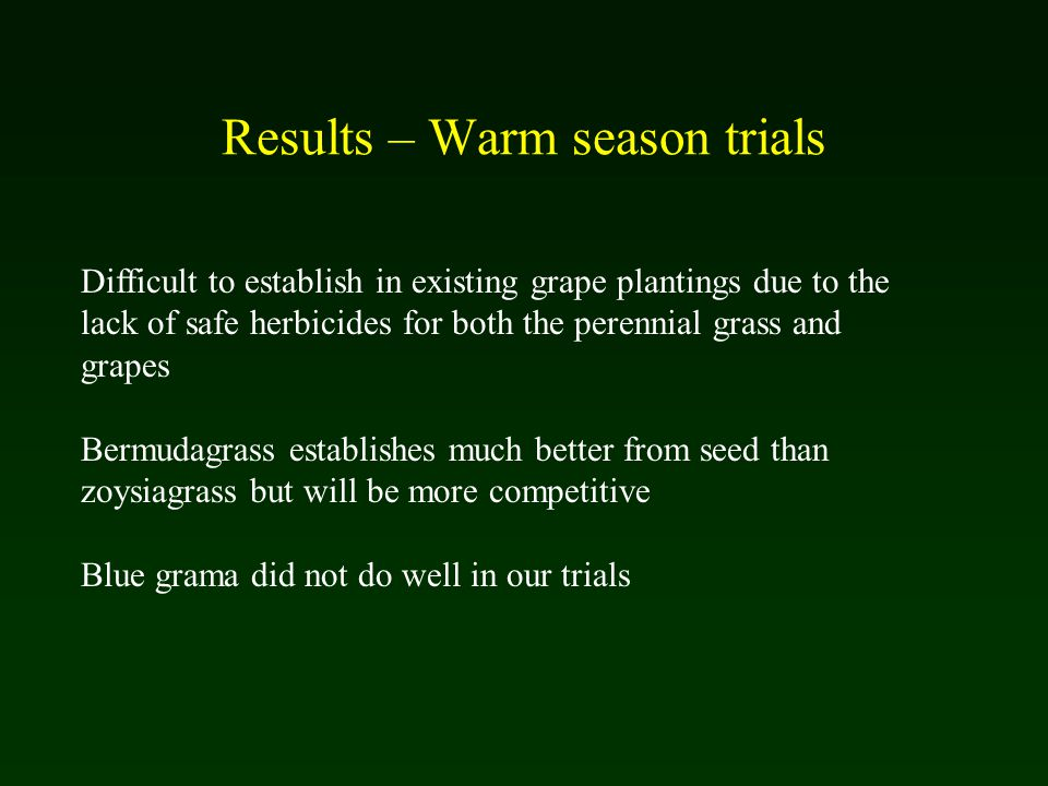 Results – Warm season trials Difficult to establish in existing grape plantings due to the lack of safe herbicides for both the perennial grass and grapes Bermudagrass establishes much better from seed than zoysiagrass but will be more competitive Blue grama did not do well in our trials