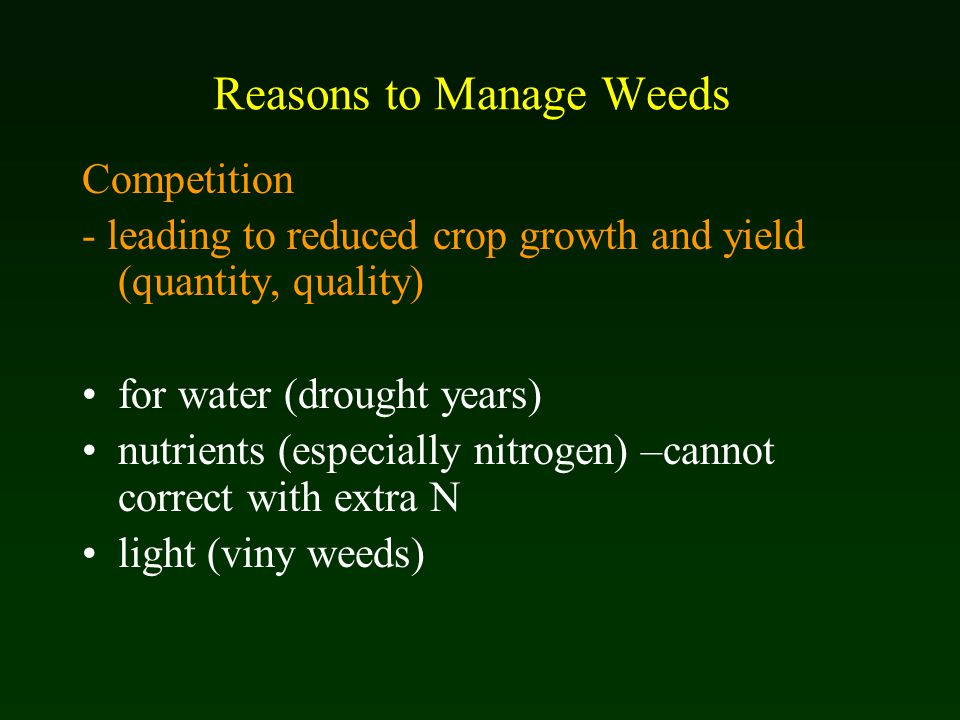Reasons to Manage Weeds Competition - leading to reduced crop growth and yield (quantity, quality) for water (drought years) nutrients (especially nitrogen) –cannot correct with extra N light (viny weeds)