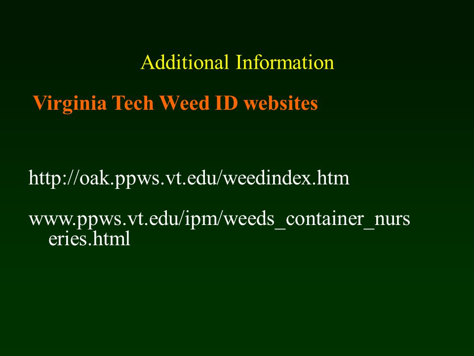 Additional Information http://oak.ppws.vt.edu/weedindex.htm www.ppws.vt.edu/ipm/weeds_container_nurs eries.html Virginia Tech Weed ID websites