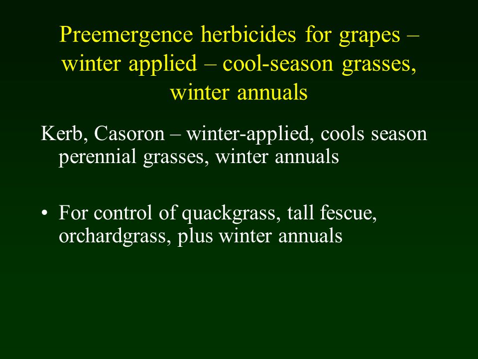 Preemergence herbicides for grapes – winter applied – cool-season grasses, winter annuals Kerb, Casoron – winter-applied, cools season perennial grasses, winter annuals For control of quackgrass, tall fescue, orchardgrass, plus winter annuals