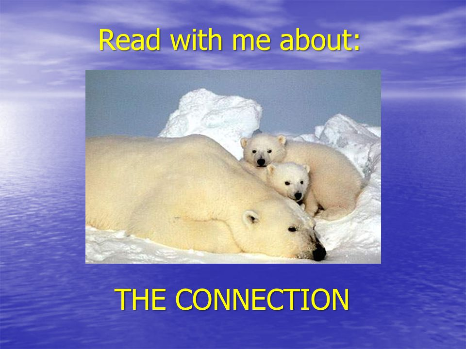 Read with me about: THE CONNECTION