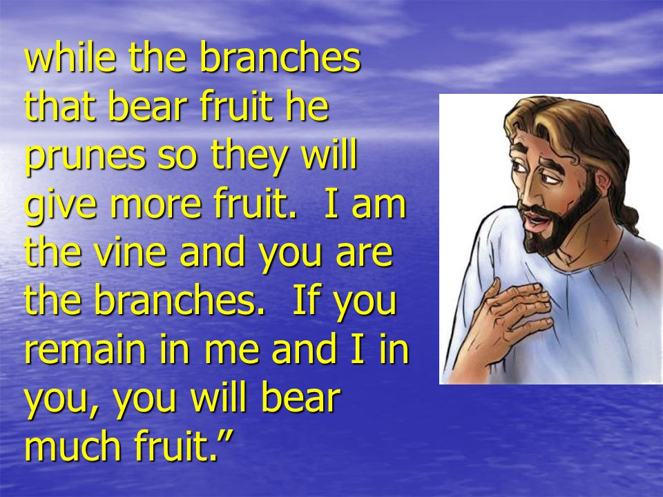 while the branches that bear fruit he prunes so they will give more fruit.