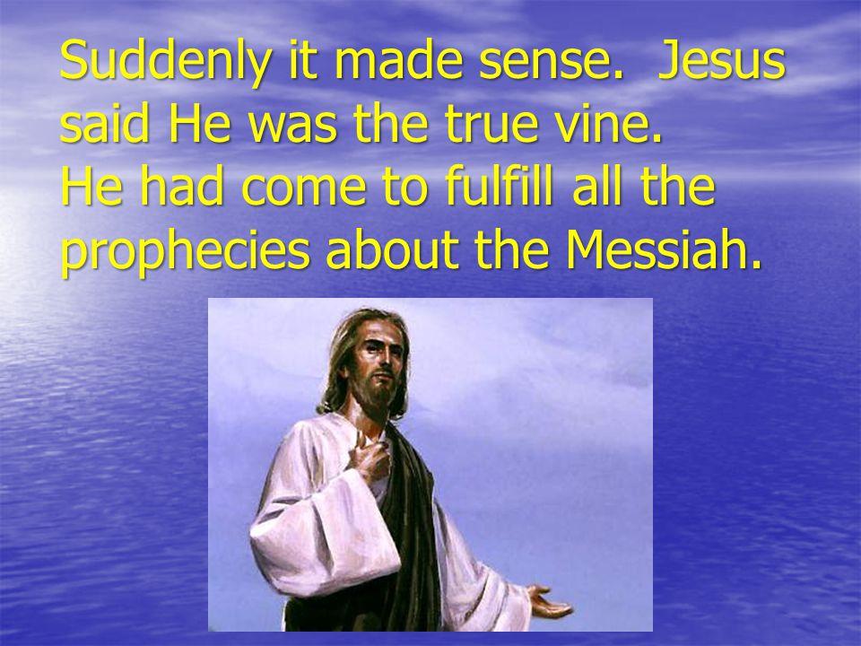 Suddenly it made sense. Jesus said He was the true vine.