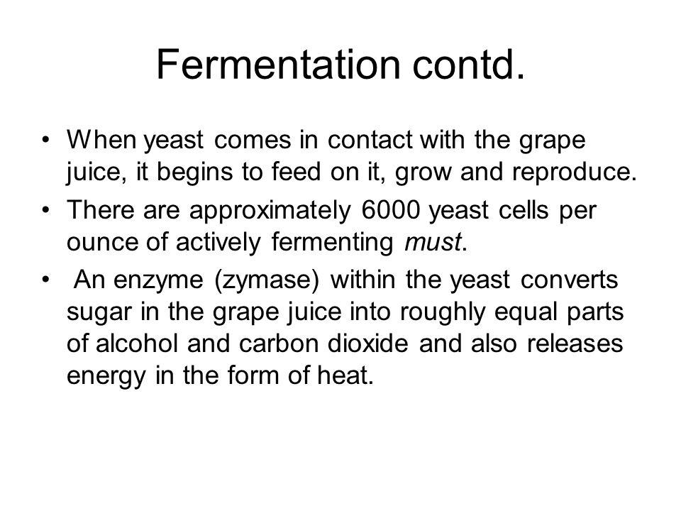 Fermentation contd.