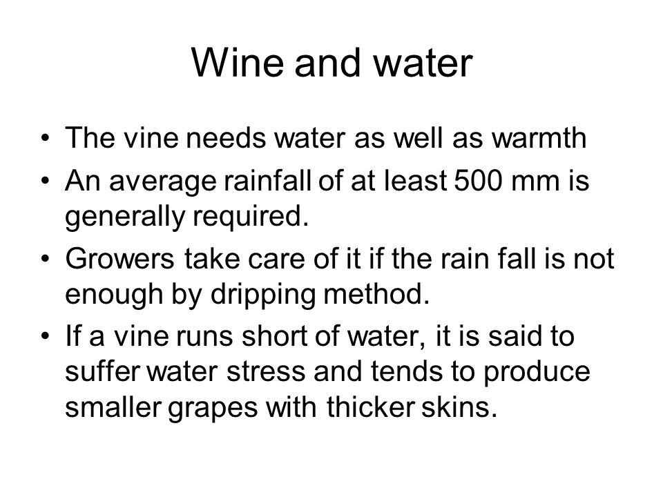 Wine and water The vine needs water as well as warmth An average rainfall of at least 500 mm is generally required.