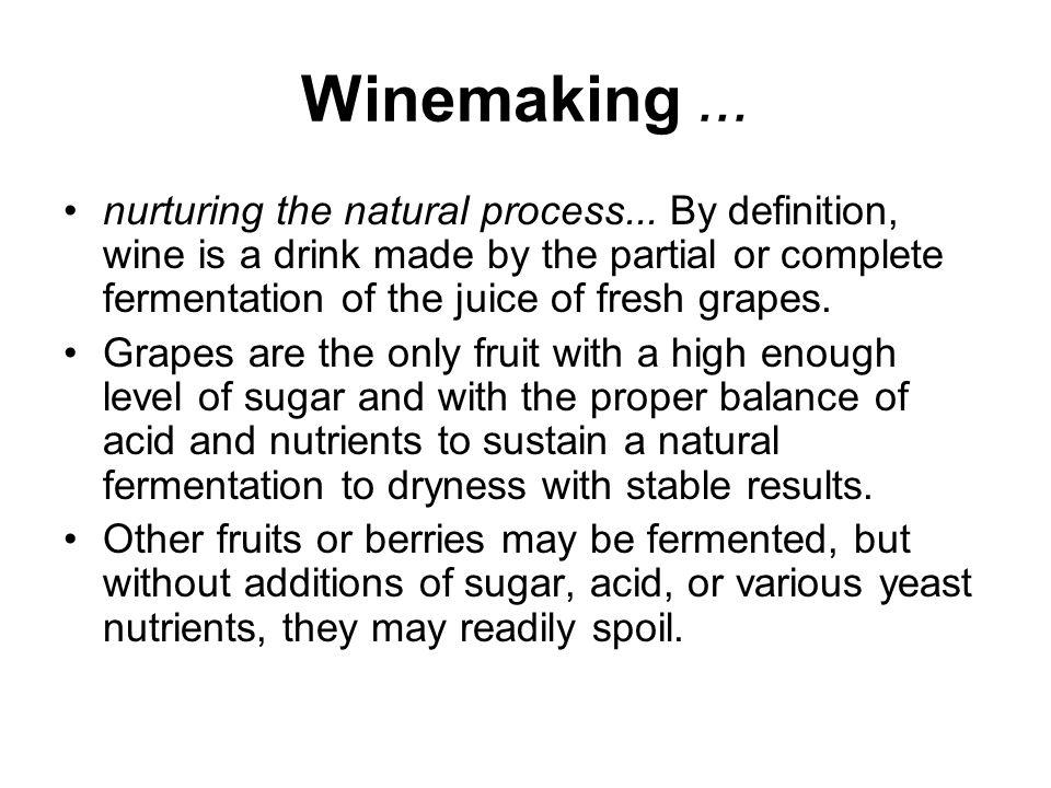 Winemaking... nurturing the natural process...