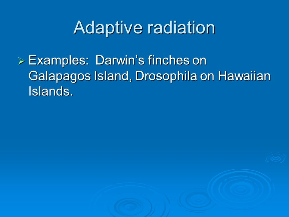 Adaptive radiation  Examples: Darwin's finches on Galapagos Island, Drosophila on Hawaiian Islands.