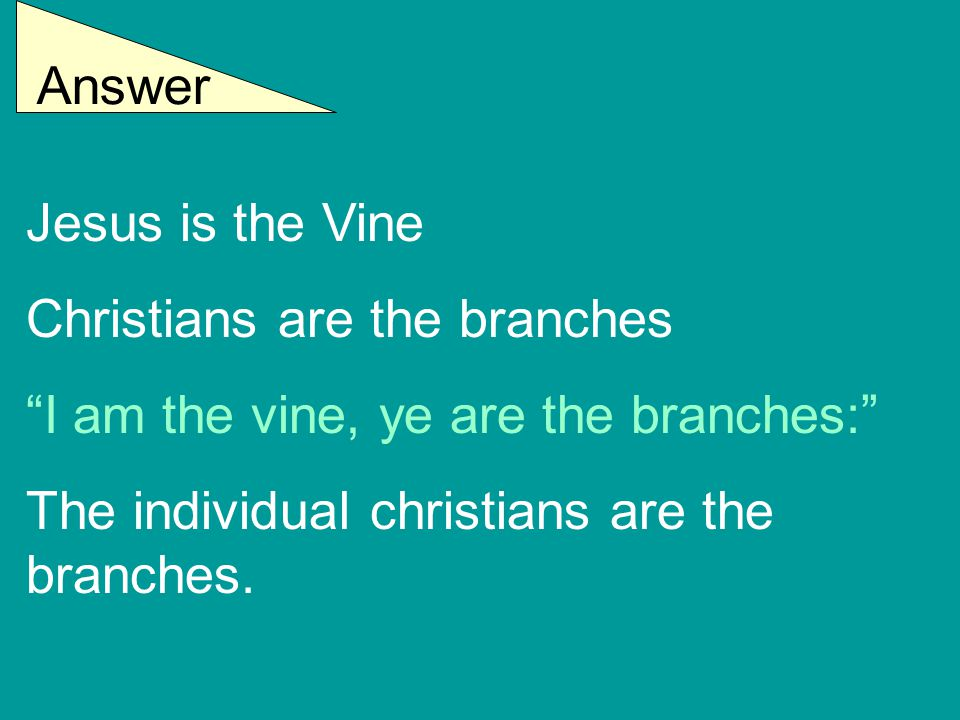 """Answer Jesus is the Vine Christians are the branches """"I am the vine, ye are the branches:"""" The individual christians are the branches."""
