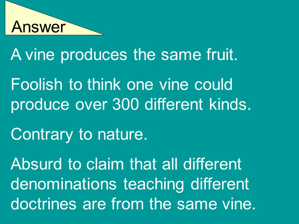Answer A vine produces the same fruit. Foolish to think one vine could produce over 300 different kinds. Contrary to nature. Absurd to claim that all