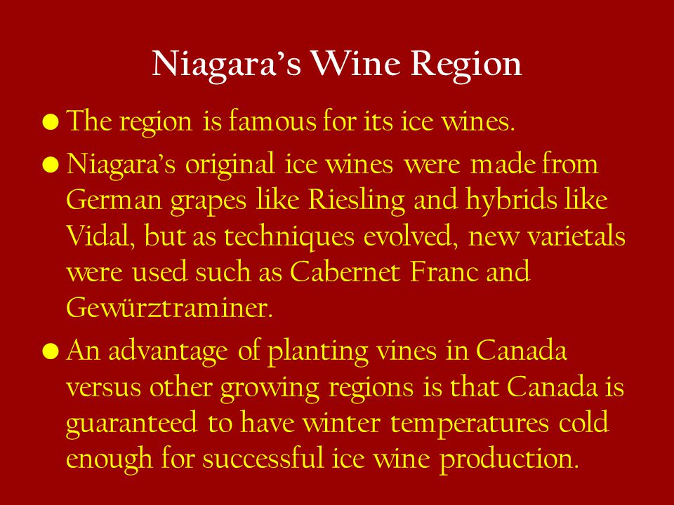 Niagara's Wine Region The region is famous for its ice wines.