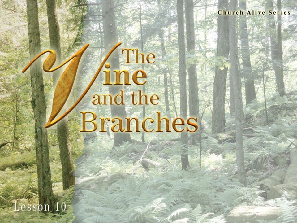 John 15:1-4 1 I am the true vine, and my Father is the husbandman.