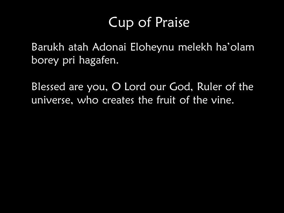 Cup of Praise Barukh atah Adonai Eloheynu melekh ha'olam borey pri hagafen.
