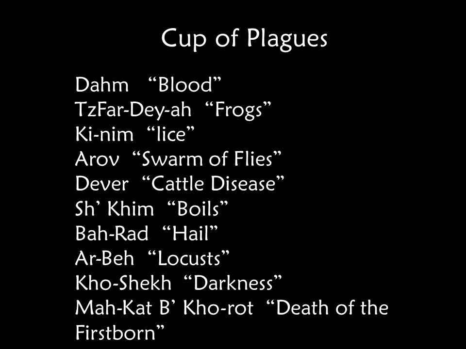 Cup of Plagues Dahm Blood TzFar-Dey-ah Frogs Ki-nim lice Arov Swarm of Flies Dever Cattle Disease Sh' Khim Boils Bah-Rad Hail Ar-Beh Locusts Kho-Shekh Darkness Mah-Kat B' Kho-rot Death of the Firstborn