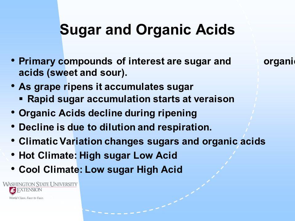 Sugar and Organic Acids during Ripening