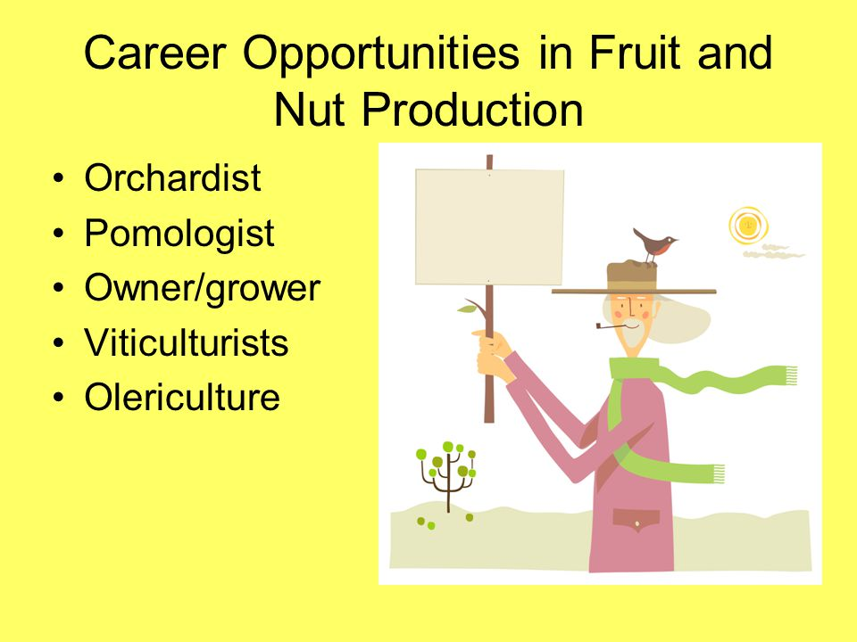 Career Opportunities in Fruit and Nut Production Orchardist Pomologist Owner/grower Viticulturists Olericulture
