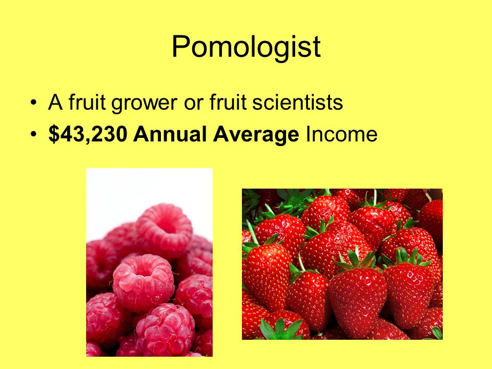 Pomologist A fruit grower or fruit scientists $43,230 Annual Average Income