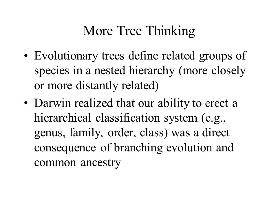 More Tree Thinking Evolutionary trees define related groups of species in a nested hierarchy (more closely or more distantly related) Darwin realized