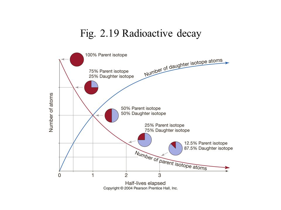 Fig. 2.19 Radioactive decay