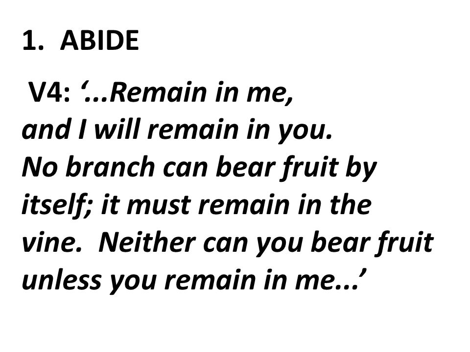 1. ABIDE V4: '...Remain in me, and I will remain in you.