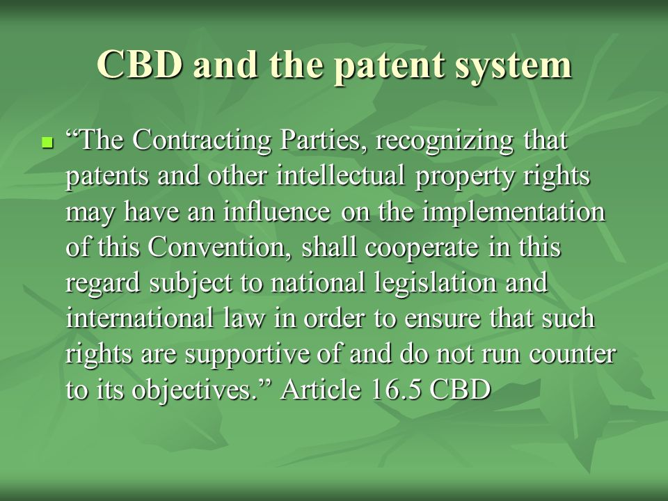 CBD and the patent system The Contracting Parties, recognizing that patents and other intellectual property rights may have an influence on the implementation of this Convention, shall cooperate in this regard subject to national legislation and international law in order to ensure that such rights are supportive of and do not run counter to its objectives. Article 16.5 CBD The Contracting Parties, recognizing that patents and other intellectual property rights may have an influence on the implementation of this Convention, shall cooperate in this regard subject to national legislation and international law in order to ensure that such rights are supportive of and do not run counter to its objectives. Article 16.5 CBD