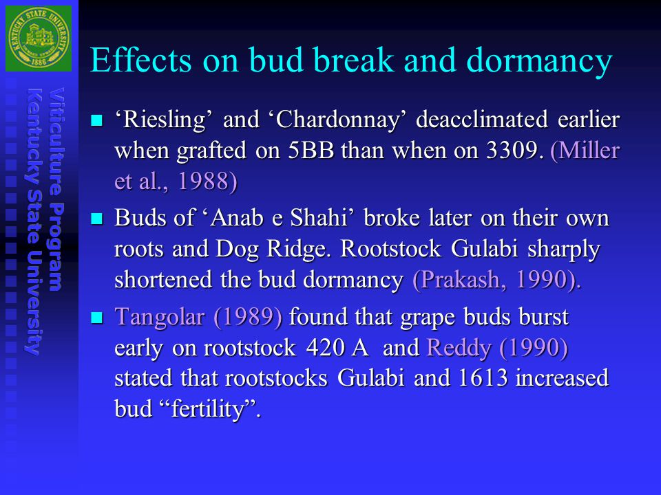 Effects on bud break and dormancy 'Riesling' and 'Chardonnay' deacclimated earlier when grafted on 5BB than when on 3309. (Miller et al., 1988) 'Riesl