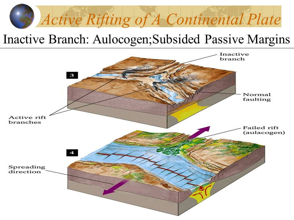 Active Rifting of A Continental Plate Inactive Branch: Aulocogen;Subsided Passive Margins