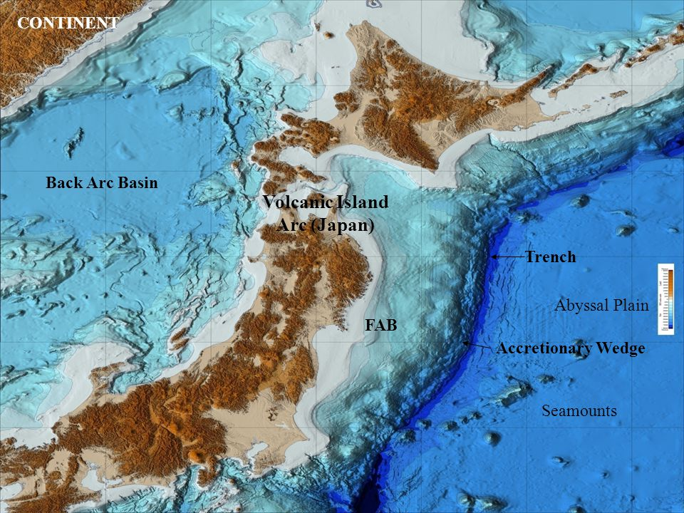 Abyssal Plain Trench Accretionary Wedge Seamounts Volcanic Island Arc (Japan) FAB Back Arc Basin CONTINENT