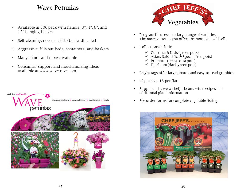 27 Wave Petunias Available in 306 pack with handle, 3 , 4 , 6 , and 12 hanging basket Self-cleaning; never need to be deadheaded Aggressive; fills out beds, containers, and baskets Many colors and mixes available Consumer support and merchandising ideas available at www.wave-rave.com 28 Program focuses on a large range of varieties.