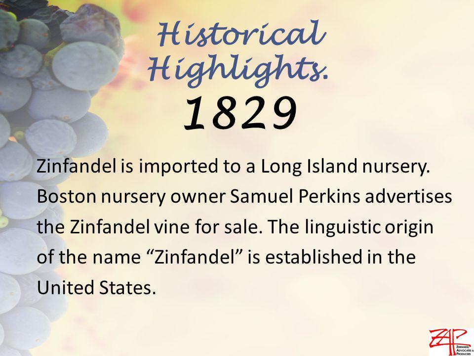 Zinfandel is imported to a Long Island nursery.