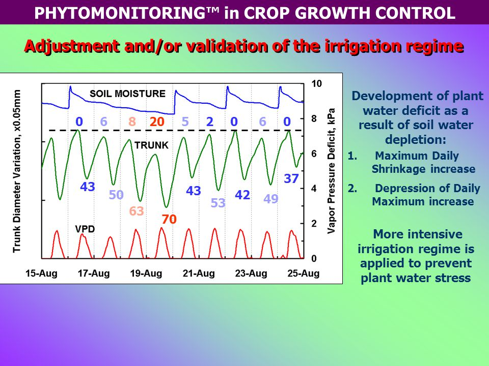 PHYTOMONITORING™ in CROP GROWTH CONTROL Adjustment and/or validation of the irrigation regime 70 63 50 43 0682052060 43 42 37 53 49 Development of plant water deficit as a result of soil water depletion: 1.