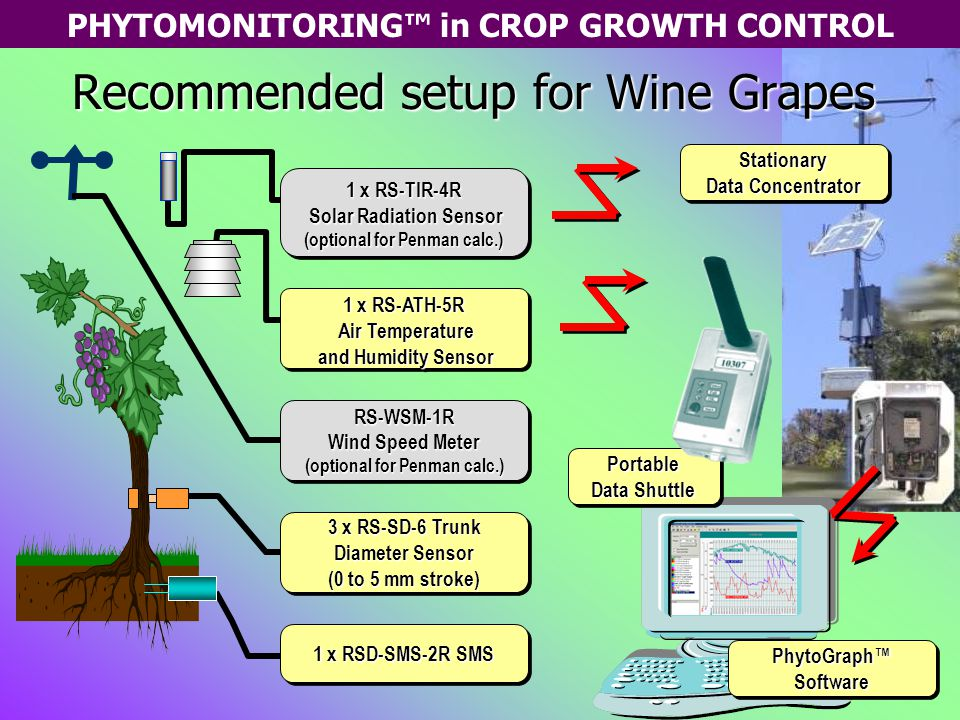 PHYTOMONITORING™ in CROP GROWTH CONTROL 1 x RS-ATH-5R Air Temperature Air Temperature and Humidity Sensor and Humidity Sensor 1 x RS-ATH-5R Air Temperature Air Temperature and Humidity Sensor and Humidity Sensor 1 x RSD-SMS-2R SMS Stationary Data Concentrator Stationary Recommended setup for Wine Grapes PhytoGraph™ Software Portable Data Shuttle Portable 1 x RS-TIR-4R Solar Radiation Sensor Solar Radiation Sensor (optional for Penman calc.) 1 x RS-TIR-4R Solar Radiation Sensor Solar Radiation Sensor (optional for Penman calc.) RS-WSM-1R Wind Speed Meter (optional for Penman calc.) RS-WSM-1R Wind Speed Meter (optional for Penman calc.) 3 x RS-SD-6 Trunk Diameter Sensor (0 to 5 mm stroke) 3 x RS-SD-6 Trunk Diameter Sensor (0 to 5 mm stroke)