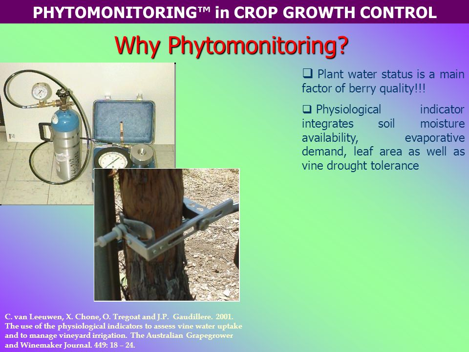 PHYTOMONITORING™ in CROP GROWTH CONTROL Why Phytomonitoring.