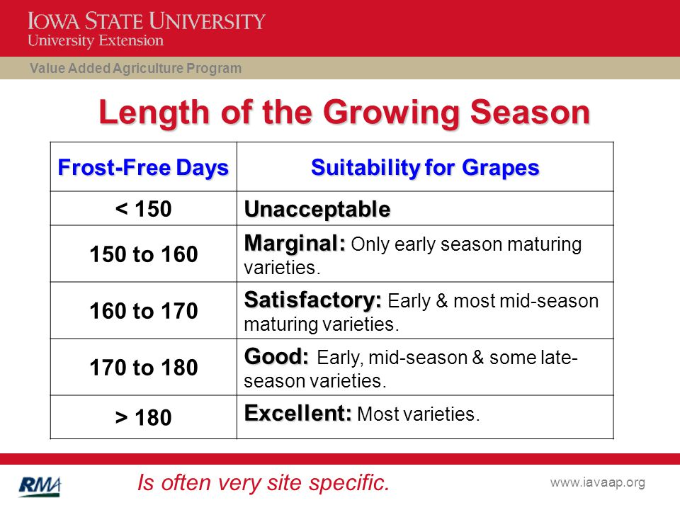 Value Added Agriculture Program www.iavaap.org Length of the Growing Season Frost-Free Days Suitability for Grapes < 150 Unacceptable 150 to 160 Marginal: Marginal: Only early season maturing varieties.