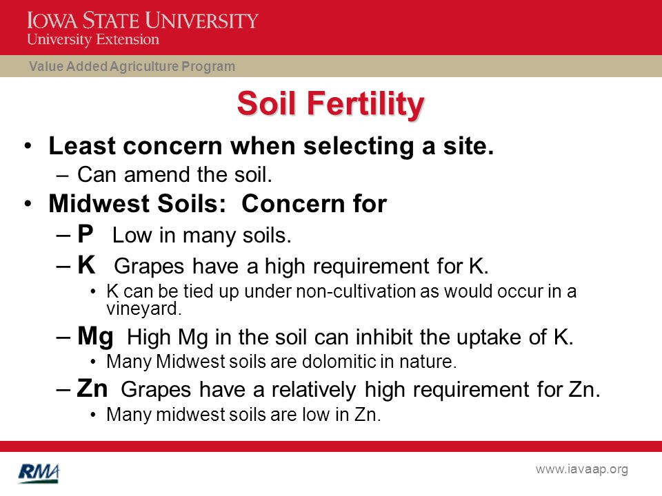 Value Added Agriculture Program www.iavaap.org Soil Fertility Least concern when selecting a site.