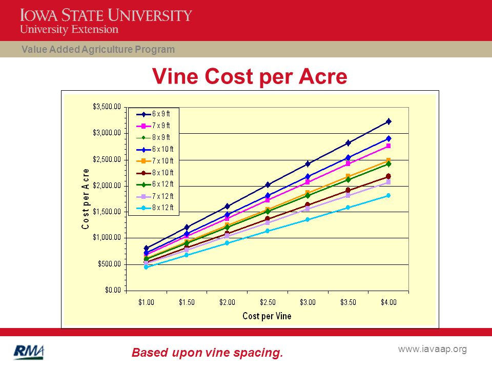 Value Added Agriculture Program www.iavaap.org Vine Cost per Acre Based upon vine spacing.