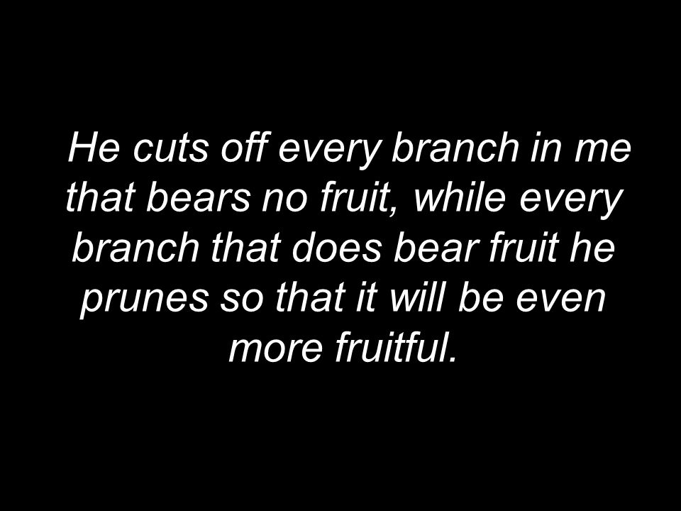 He cuts off every branch in me that bears no fruit, while every branch that does bear fruit he prunes so that it will be even more fruitful.