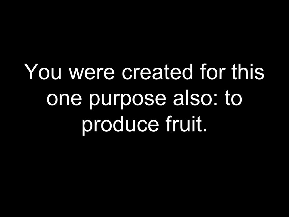 You were created for this one purpose also: to produce fruit.