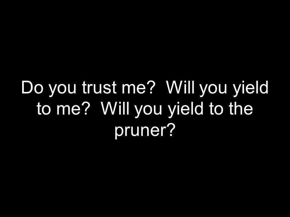 Do you trust me Will you yield to me Will you yield to the pruner