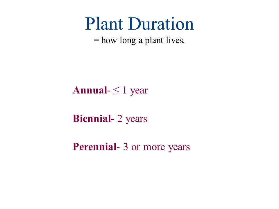 Plant Duration = how long a plant lives.