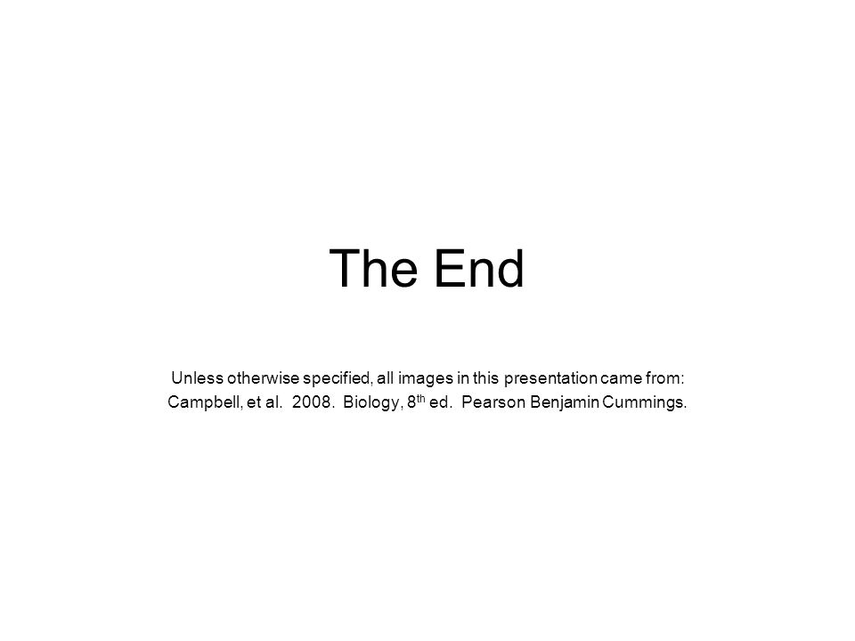 The End Unless otherwise specified, all images in this presentation came from: Campbell, et al.