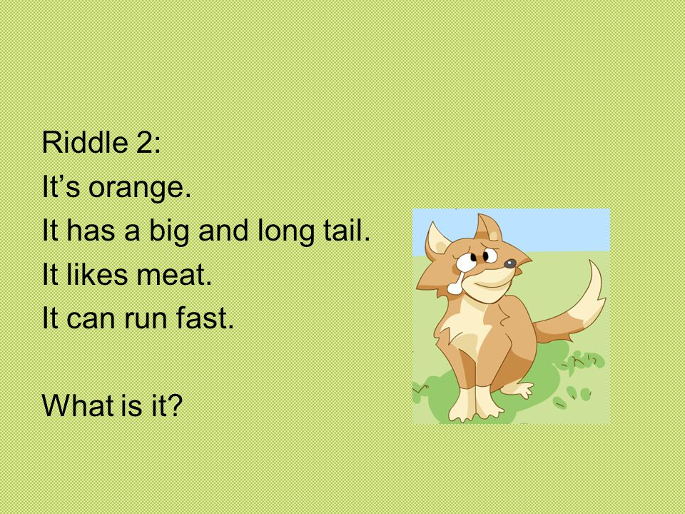 Riddle 2: It's orange. It has a big and long tail. It likes meat. It can run fast. What is it