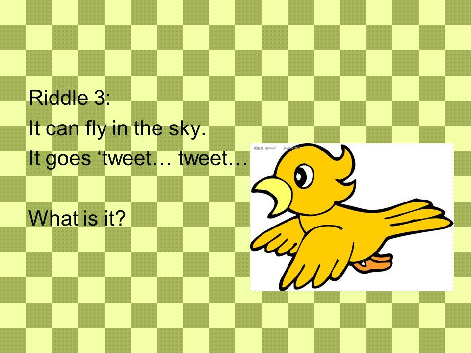 Riddle 3: It can fly in the sky. It goes 'tweet… tweet…' What is it