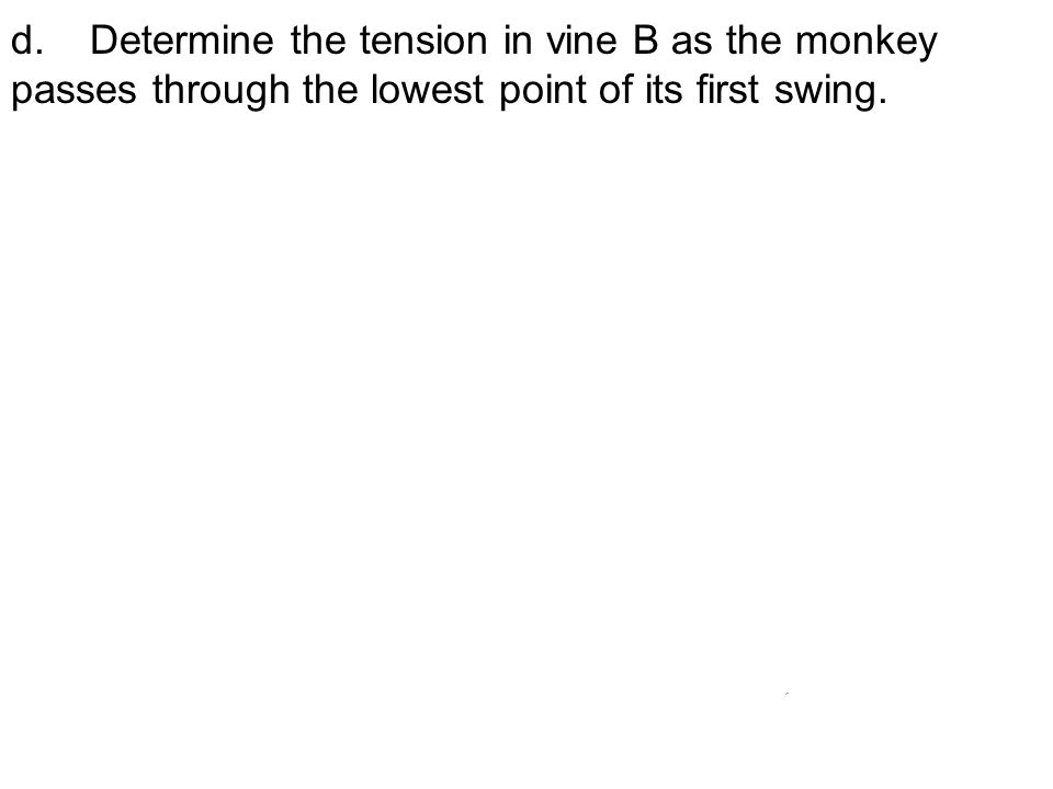 d. Determine the tension in vine B as the monkey passes through the lowest point of its first swing.