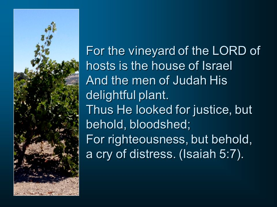 For the vineyard of the LORD of hosts is the house of Israel And the men of Judah His delightful plant. Thus He looked for justice, but behold, bloods