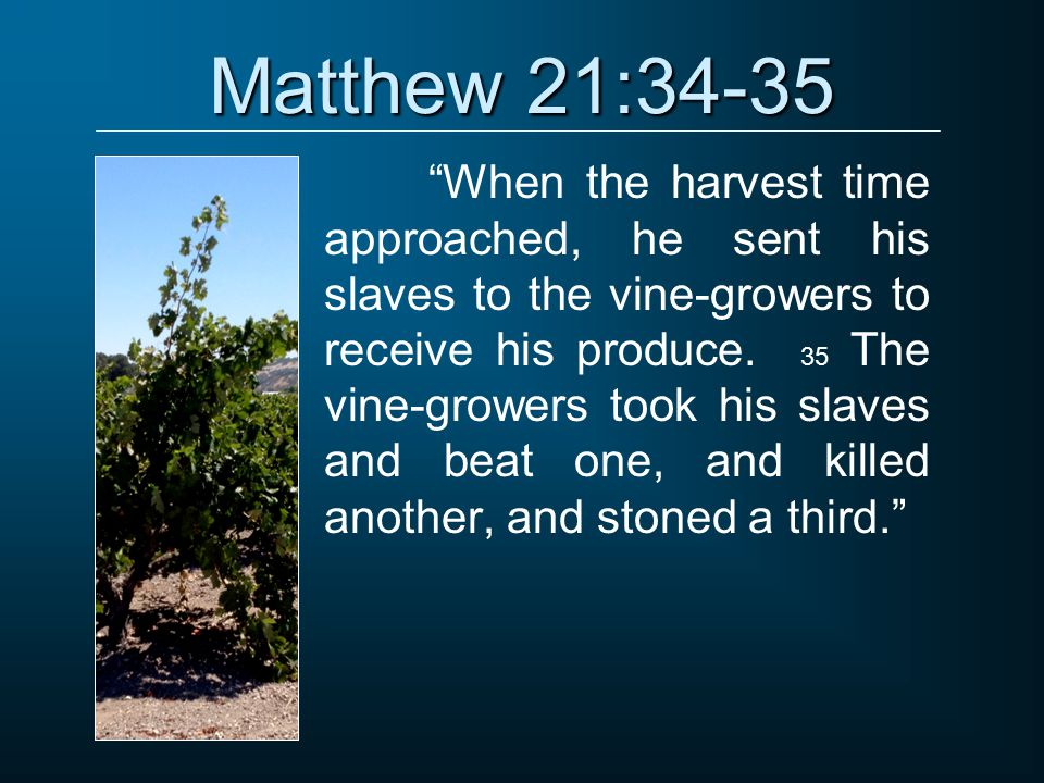 """Matthew 21:34-35 """"When the harvest time approached, he sent his slaves to the vine-growers to receive his produce. 35 The vine-growers took his slaves"""