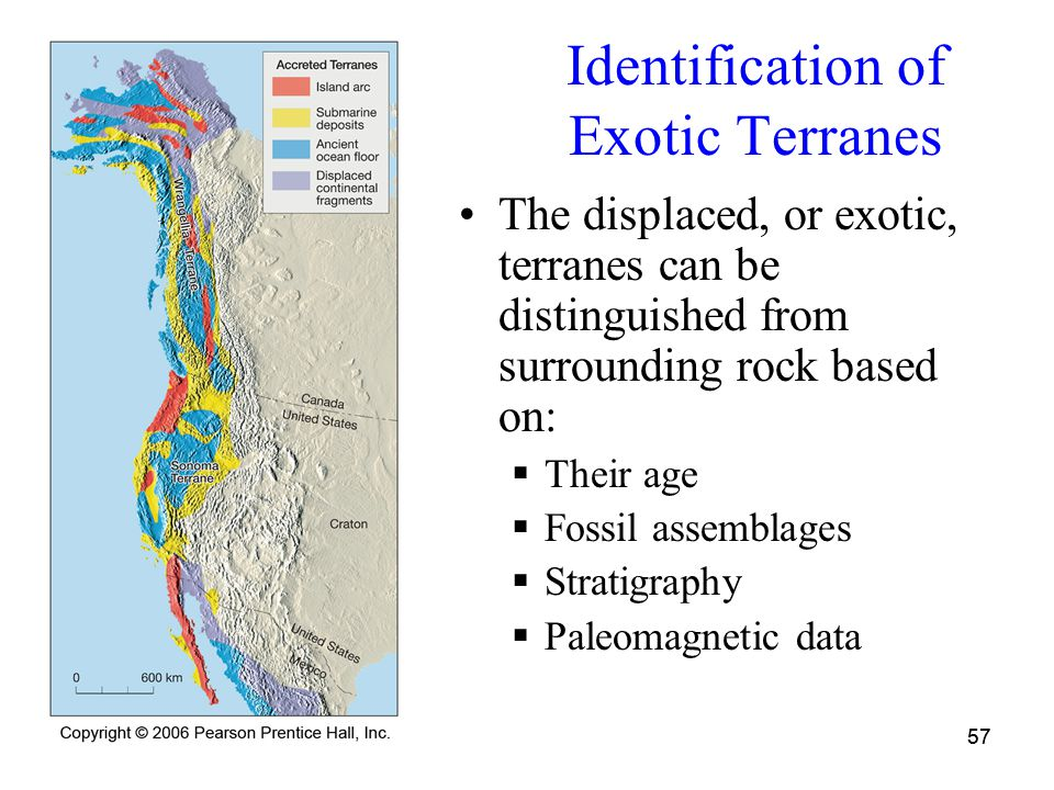 57 Identification of Exotic Terranes The displaced, or exotic, terranes can be distinguished from surrounding rock based on:  Their age  Fossil assemblages  Stratigraphy  Paleomagnetic data