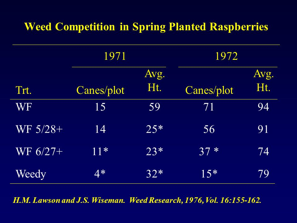 Weed Competition in Spring Planted Raspberries Trt.Canes/plot Avg.