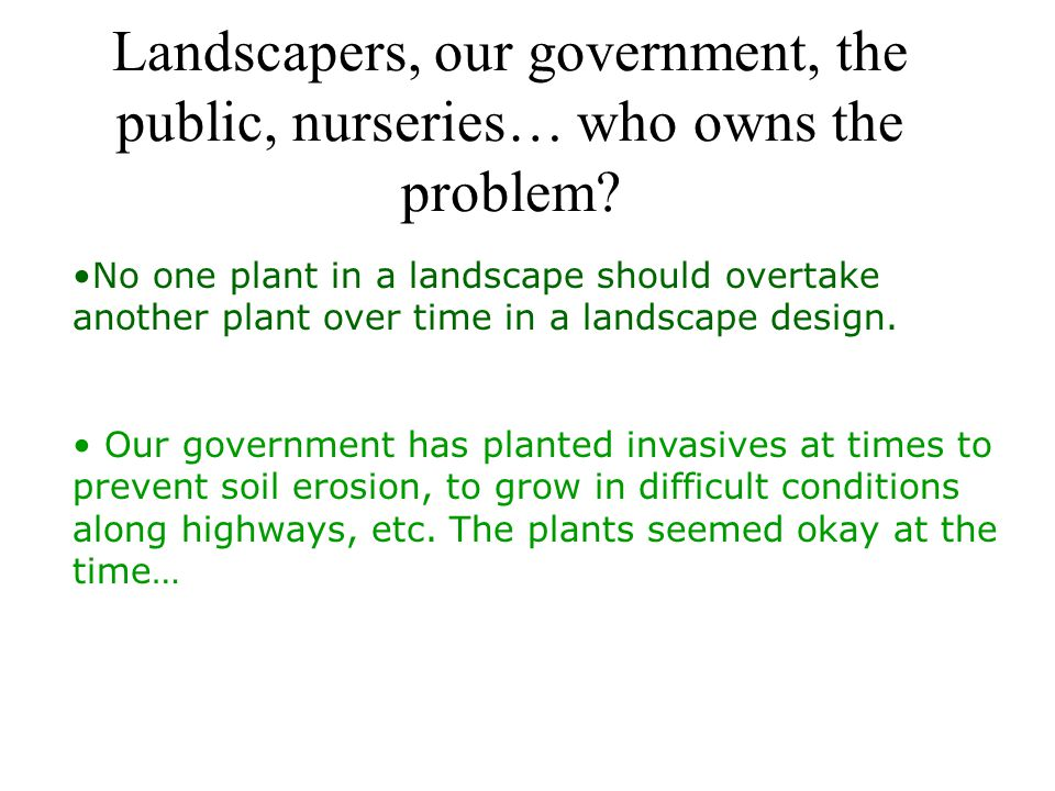 Landscapers, our government, the public, nurseries… who owns the problem.