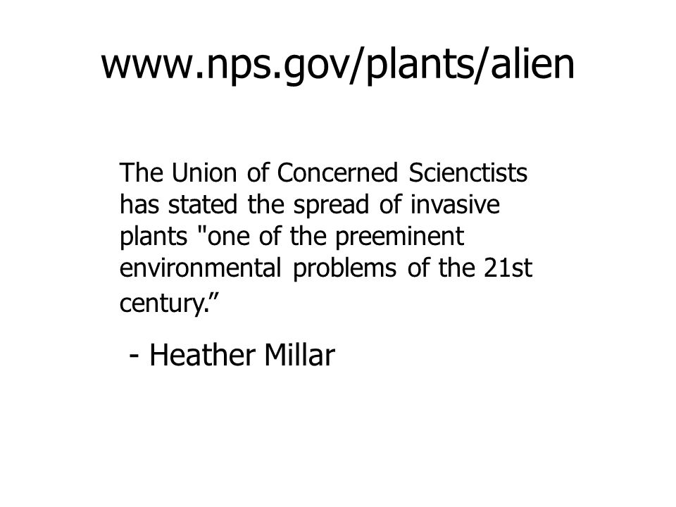 www.nps.gov/plants/alien The Union of Concerned Scienctists has stated the spread of invasive plants one of the preeminent environmental problems of the 21st century. - Heather Millar